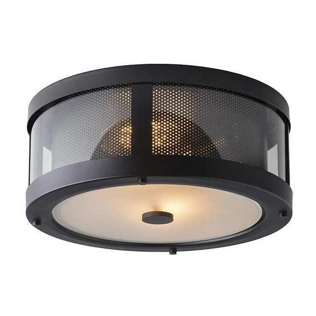 Bluffton Flush Mount Ceiling Lighting 13553